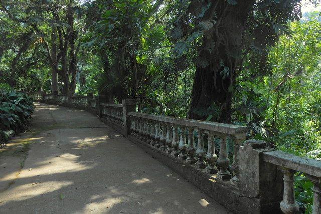 Caminos dentro del Parque da Cidade Rio de Janeiro
