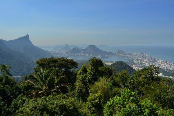 Vista de la Floresta da Tijuca desde el Mirador Chino Rio de Janeiro
