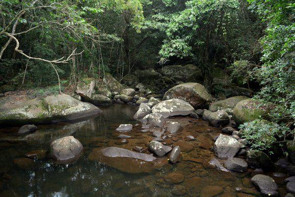 Pozas Isla Grande Ilha Grande Rio de Janeiro