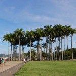 Alojamiento en Flamengo y Catete Donde dormir Alojamiento en Rio de Janeiro