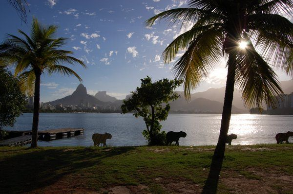 Relajante vista de la puesta de sol desde la Laguna Rodrigo de Freitas Los mejores lugares para ver la puesta de sol en Río de Janeiro