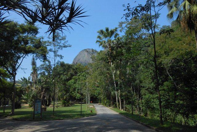 Vista de Dois Irmaos desde el Parque da Cidade Rio de Janeiro
