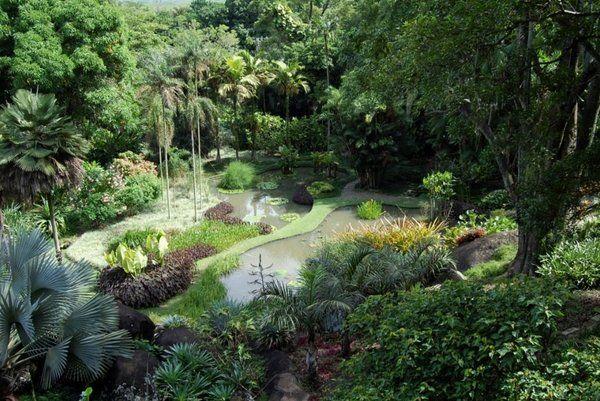 Colección de plantas del Sitio Burle Marx Barra de Tijuca Rio de Janeiro