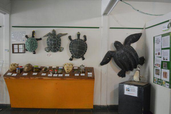 Centro de visitantes Parque Chico Mendes Rio de Janeiro