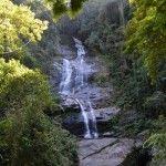 Floresta da Tijuca Areas verdes de Rio de Janeiro
