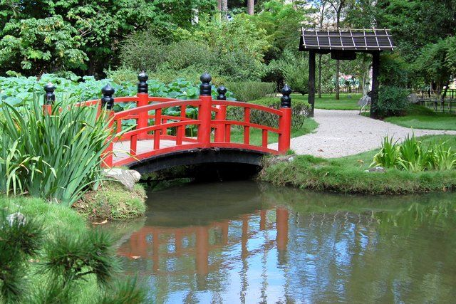 Jardin botanico rio de janeiro imagina r o de janeiro for Jardin botanico en sevilla