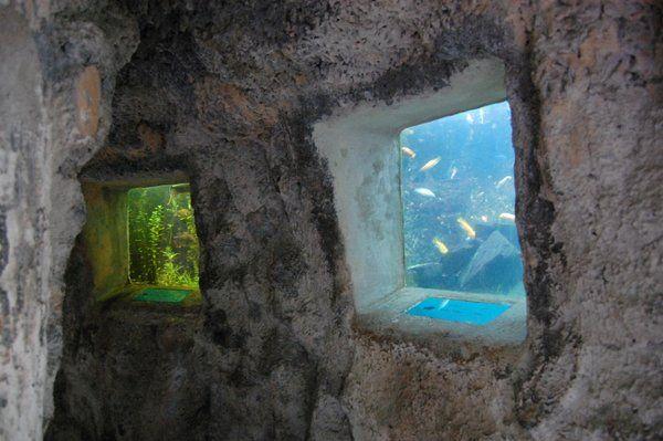 Acuarios incrustados en una de las grutas Parque Lage Rio de Janeiro