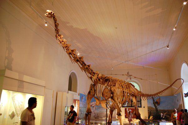 Sala dedicada a los dinosaurios Museo Nacional UFRJ Rio de Janeiro