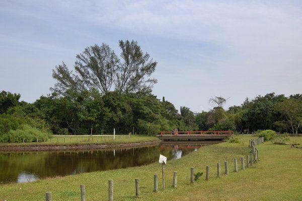 Laguna del Bosque da Barra Rio de Janeiro