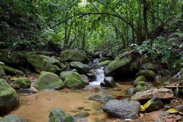Ecoturismo y aventura tours guiados de Rio de Janeiro