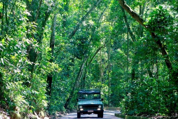 Circuito en jeep por rio de janeiro a través de la Floresta da Tijuca Ecoturismo y aventura en jeep por Rio de Janeiro