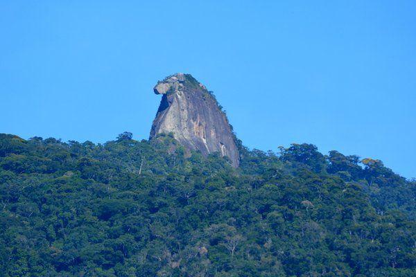 Pico do Papagaio isla grande brasil