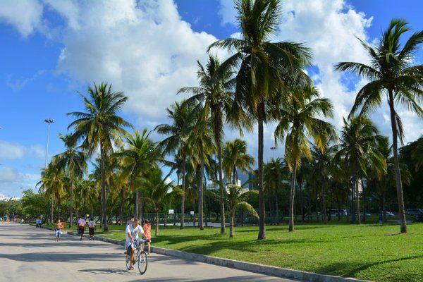 Ciclista disfrutando bajo las palmeras de Playa de Flamengo Rio de Janeiro