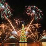 Arbol de Navidad Flotante de Río de Janeiro