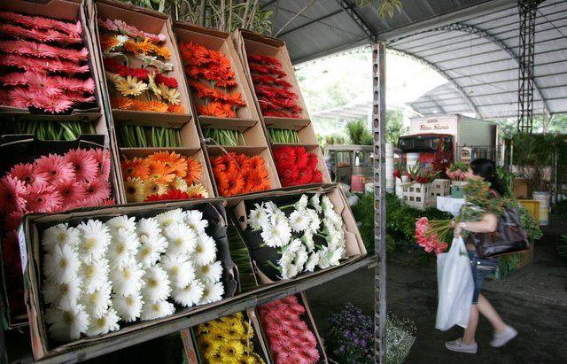 Pabellón de las Flores del Cadeg Mercado Municipal de Rio de Janeiro