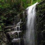 Las mejores Cascadas de Río, un baño refrescante en medio de la naturaleza