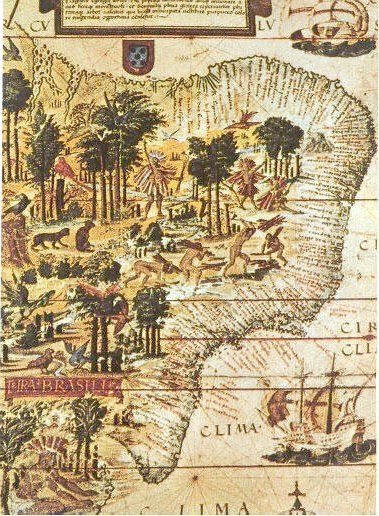 mapa terra brasilis con el pau-brasil